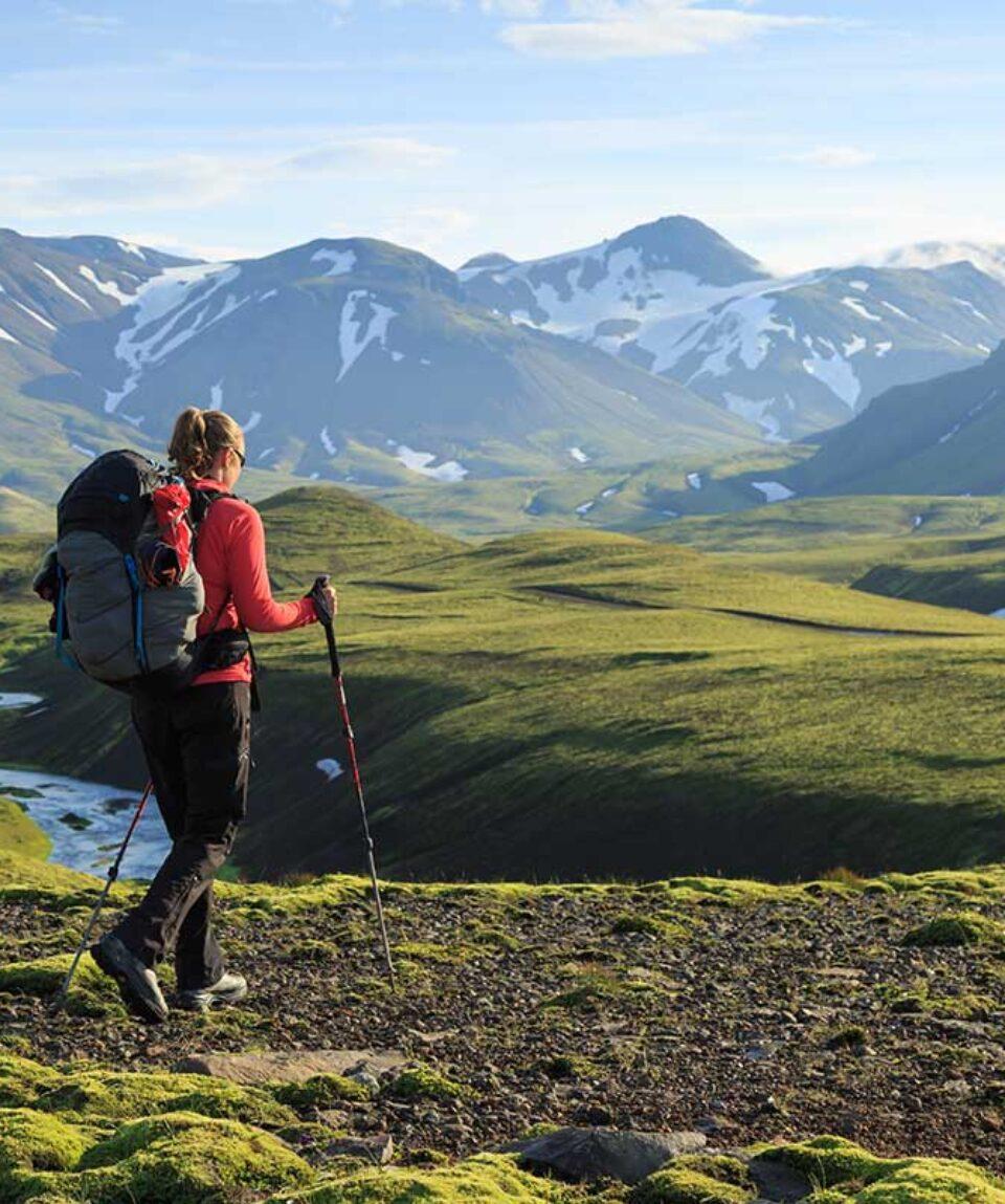 HikingSticks